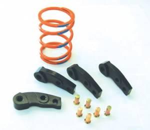 Dalton Industries - Dalton clutch kit DK 750BF 05-07 Brute Force 750 4x4
